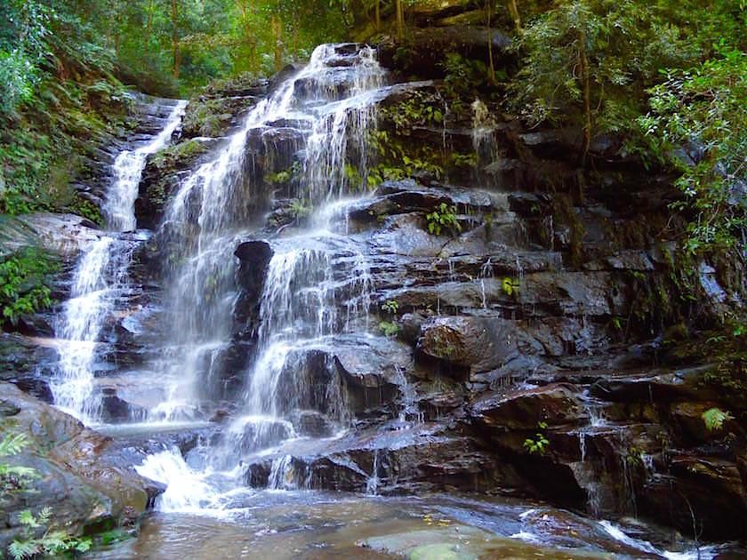 Sylvia Falls auf dem Weg zu Wentworth Falls - Blue Mountains - NSW