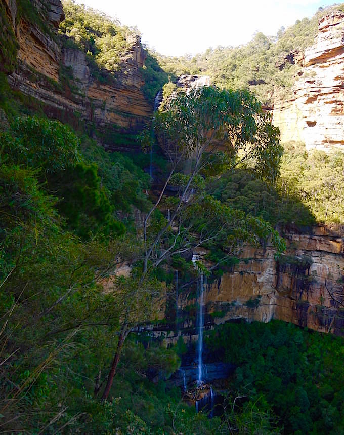 National Pass - Blick auf die Wentworth Falls - Blue Mountains - NSW