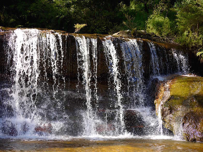Queen's Cascades - Wentworth Falls - Blue Mountains - NSW