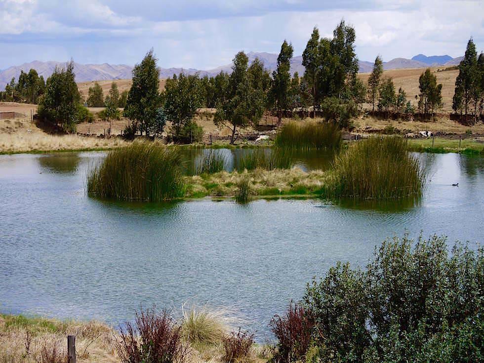 Huayllarcocha - Weg zu Saqsaywaman - Cusco Highlights - Peru