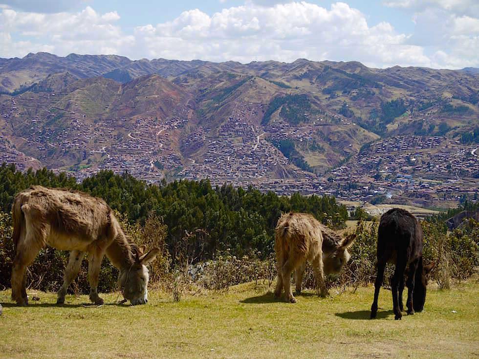 Blick auf Cusco und Umland - Cusco Highlights - Peru
