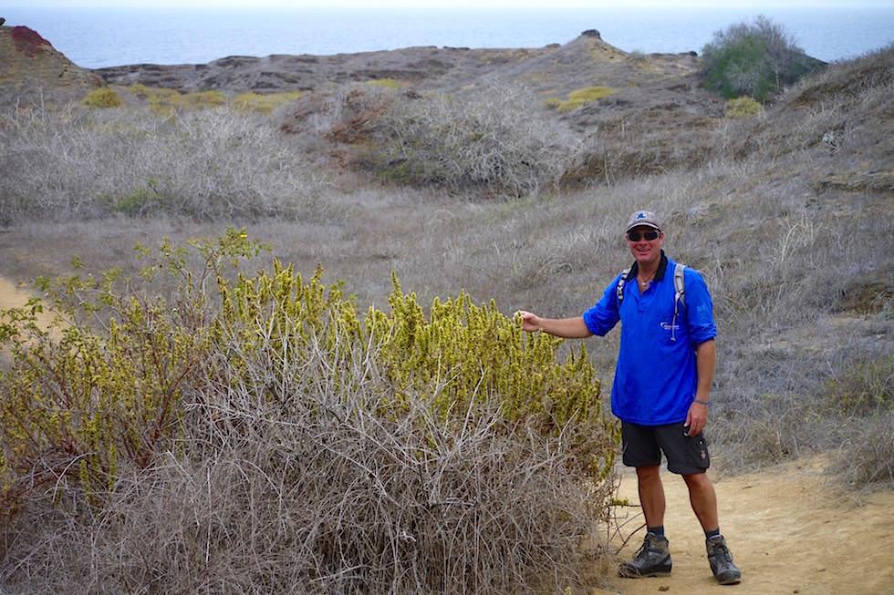 Spaziergang Pitt Point San Cristobal - Galapagos