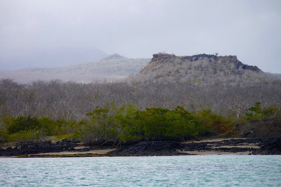 Küste Nebel - Floreana - Galapagos