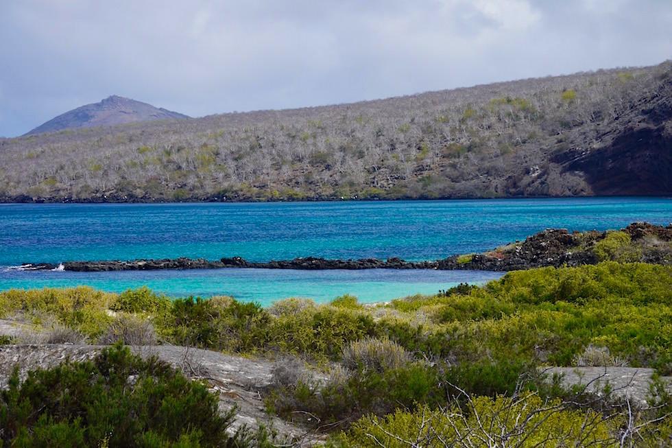 Blick auf Cormorant Point - Floreana - Galapagos