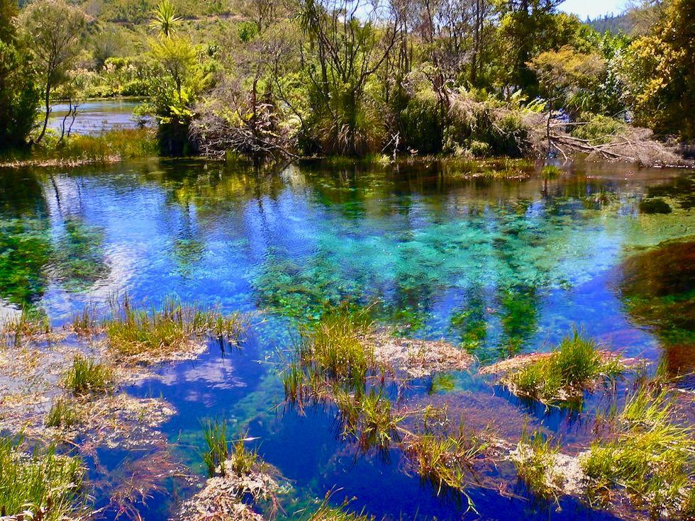 Pupu Springs - Atemberaubende Farben & klarstes Wasser der Welt - Golden Bay Geheimtipp - Südinsel Neuseeland