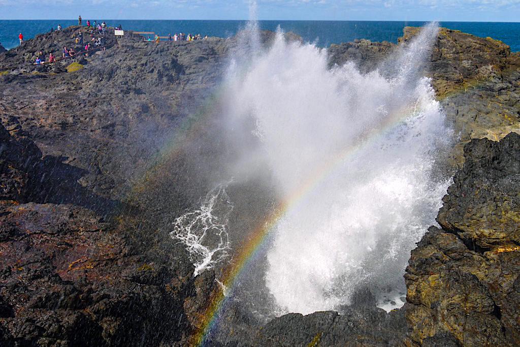 Aus dem Kiama Blowhole schießen gigantische Wassermassen schießen bis 60 m aus den Felsen empor - Bekanntestes Kiama Highlight - New South Wales
