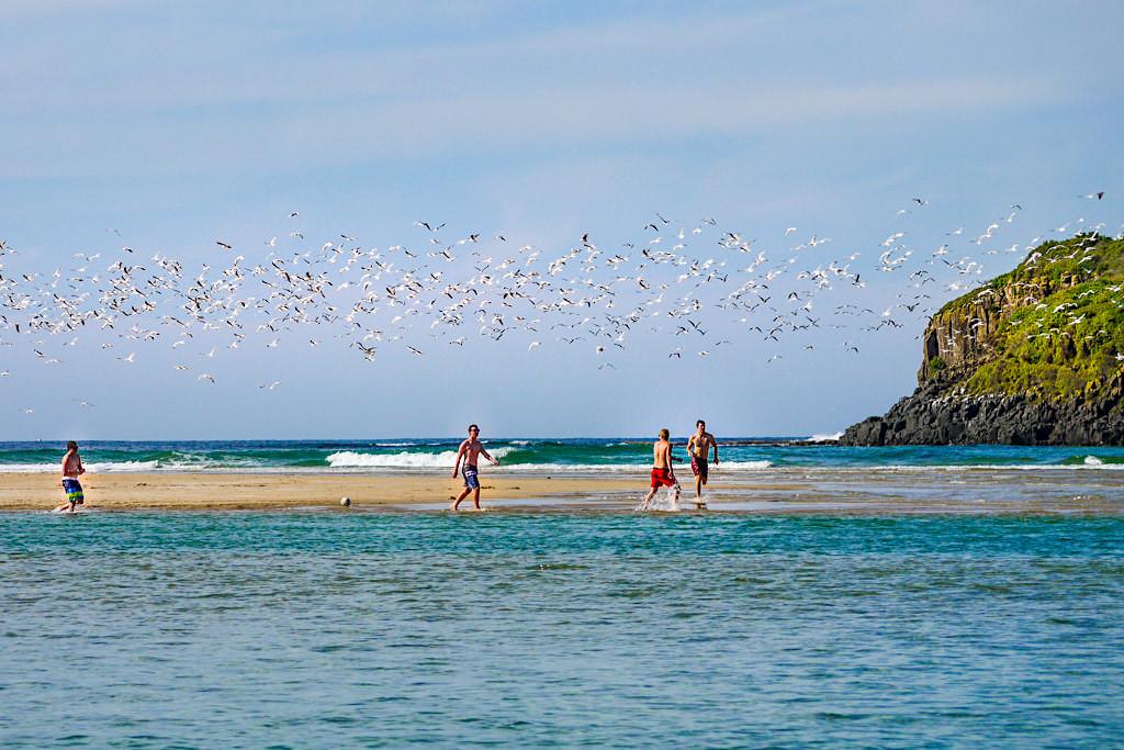 Minnamurra Beach - Action Playground & Kiama Highlight - New South Wales