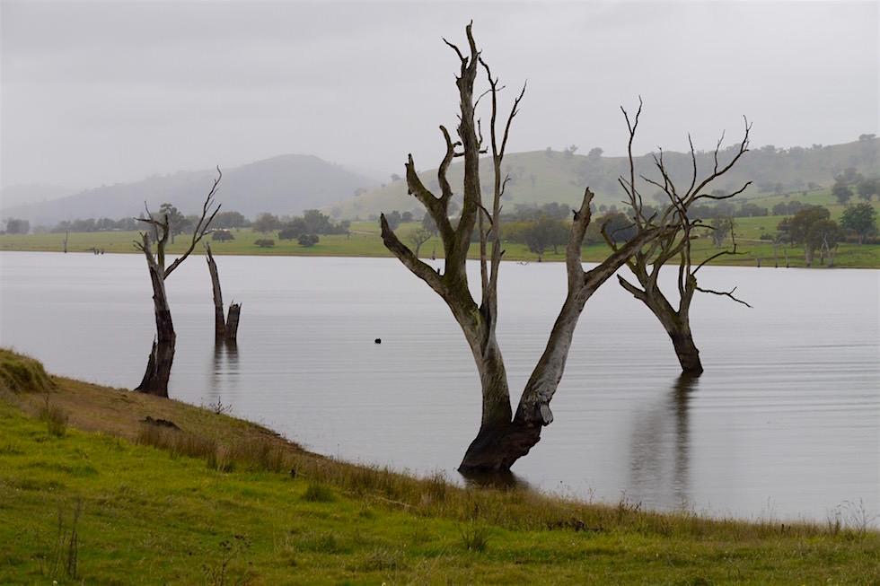 Lake Hume bei Regen und Nebel - Victoria