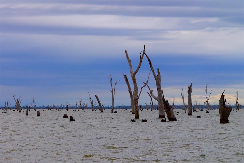 Lake Mulwala bei Yarrawonga - Victoria