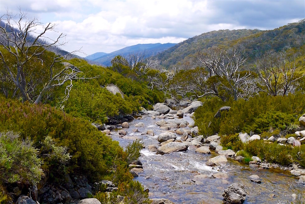 Thredbo River Walk - Kosciuszko National Park - NSW