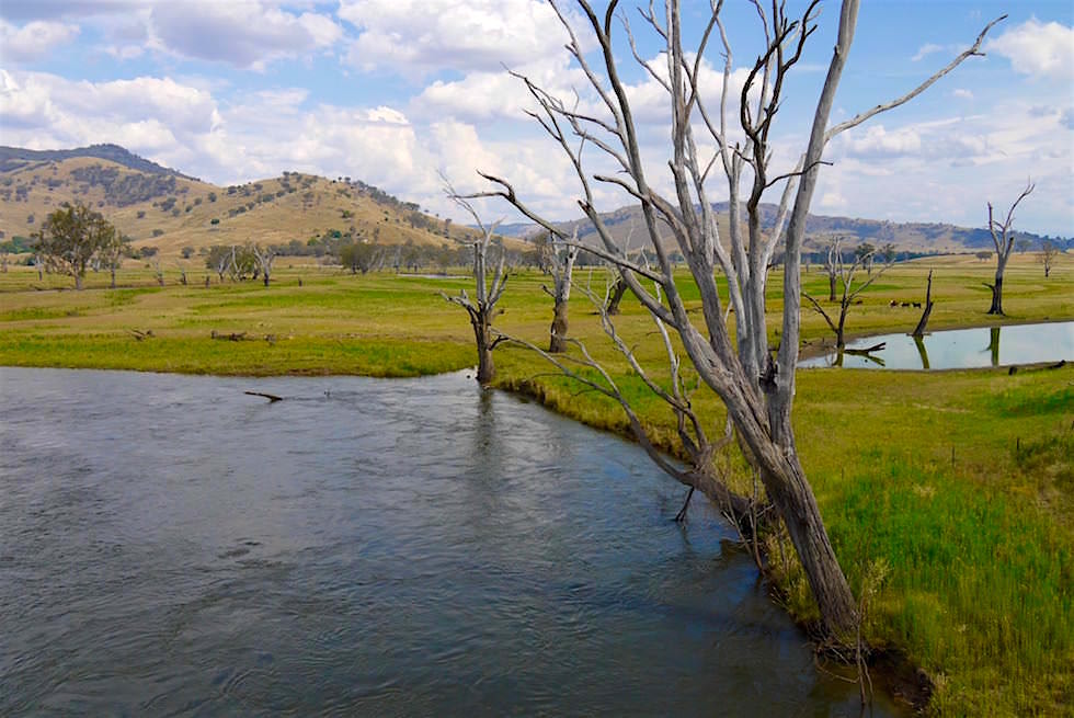 Mitta Mitta River & Valley - Victoria