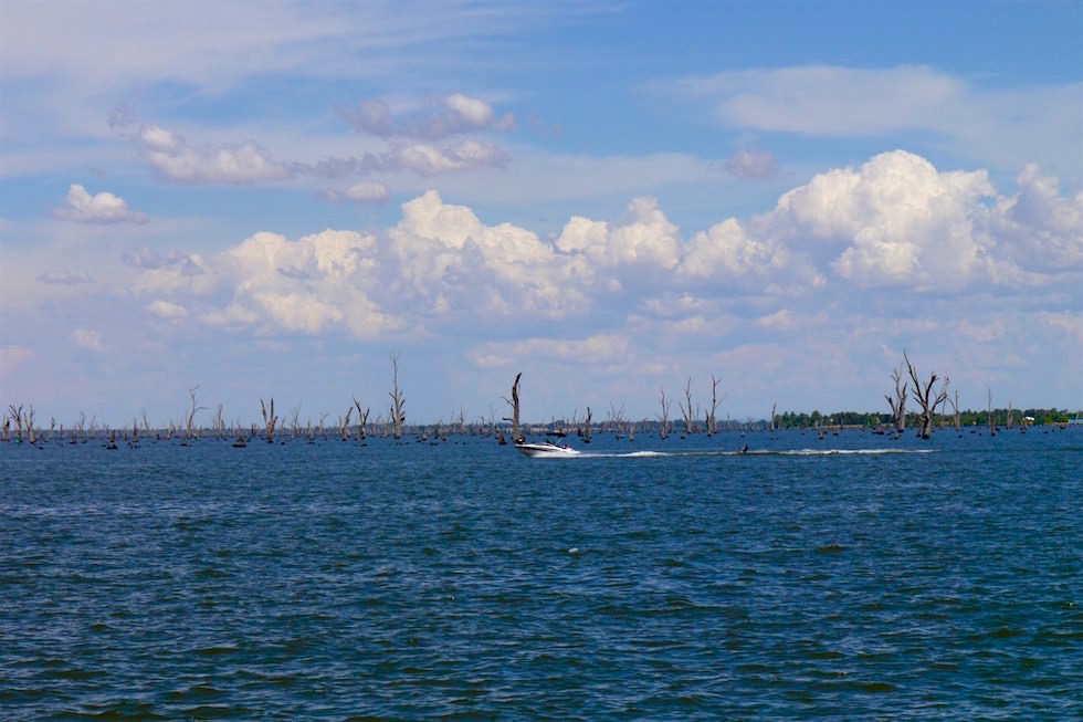 Jetboat & Wasserski Lake Hume - Victoria