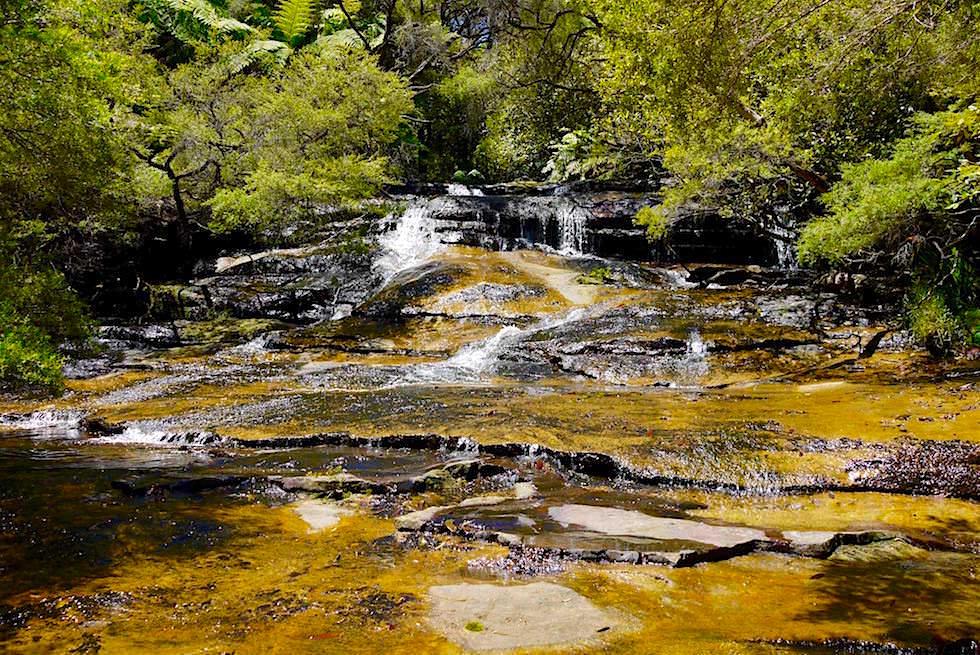 Leura Falls - Blue Mountains - NSW