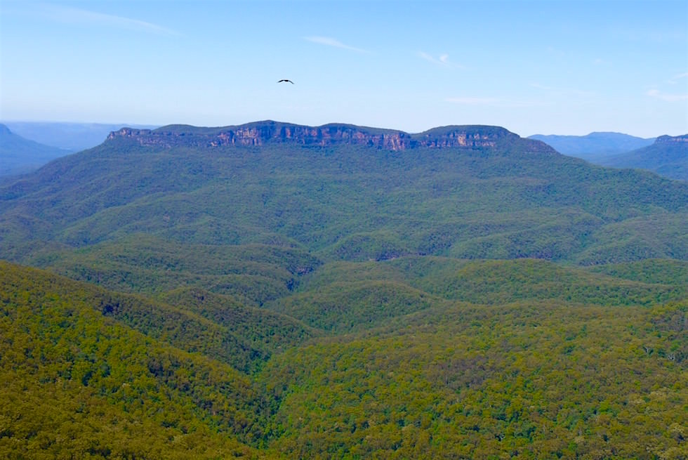 Blick vom Evans Lookout - Blue Mountains - NSW