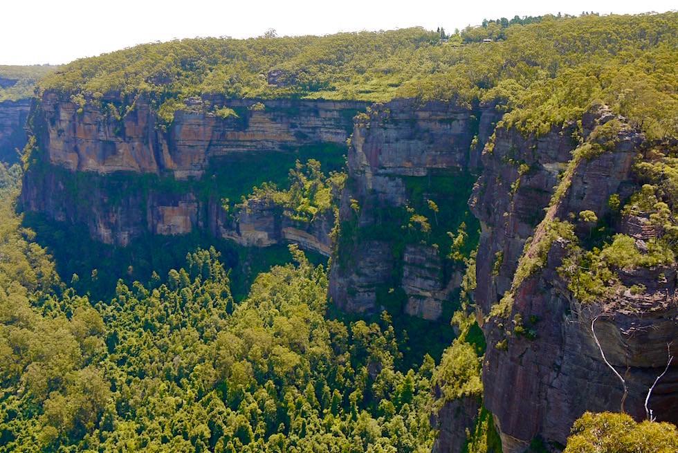 View Pulpit Aussichtsplattform - Blue Mountains - NSW