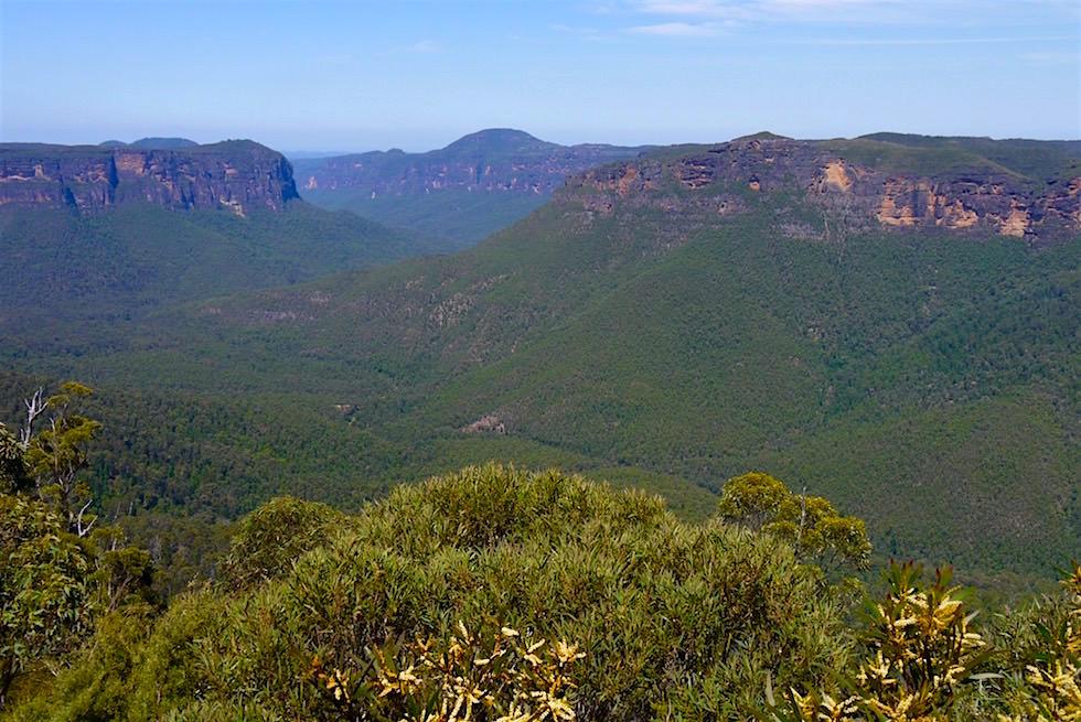 Ausblick vom Pulpit Lookout - Blue Mountains - NSW
