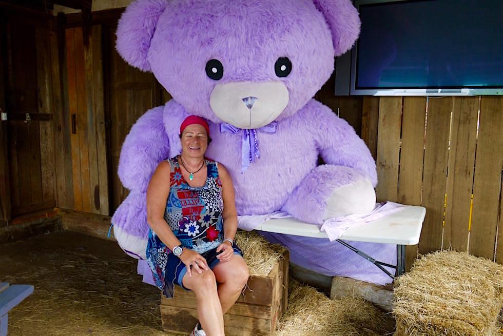 Petra & Lavendelbär - Bridestowe Lavender Farm - Tasmania