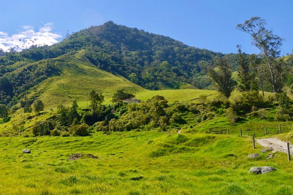Valle del Cocora - Start der Wanderung - Salento - Kolumbien