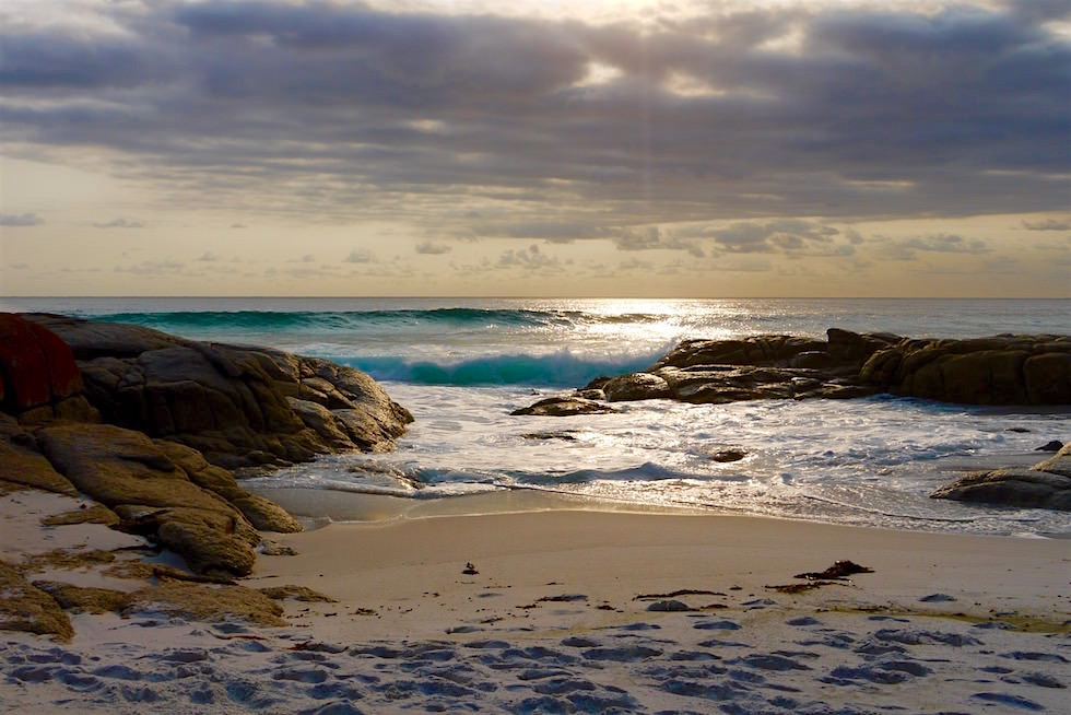 Morgenstimmung - Bay of Fires - Tasmanien