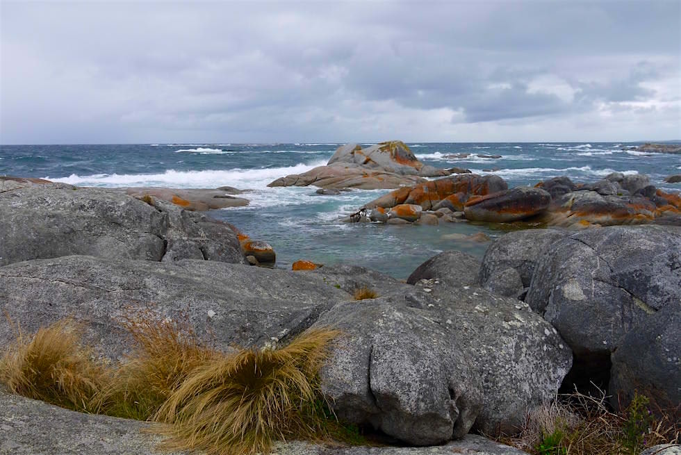 The Gardens - Bay of Fire - Tasmania