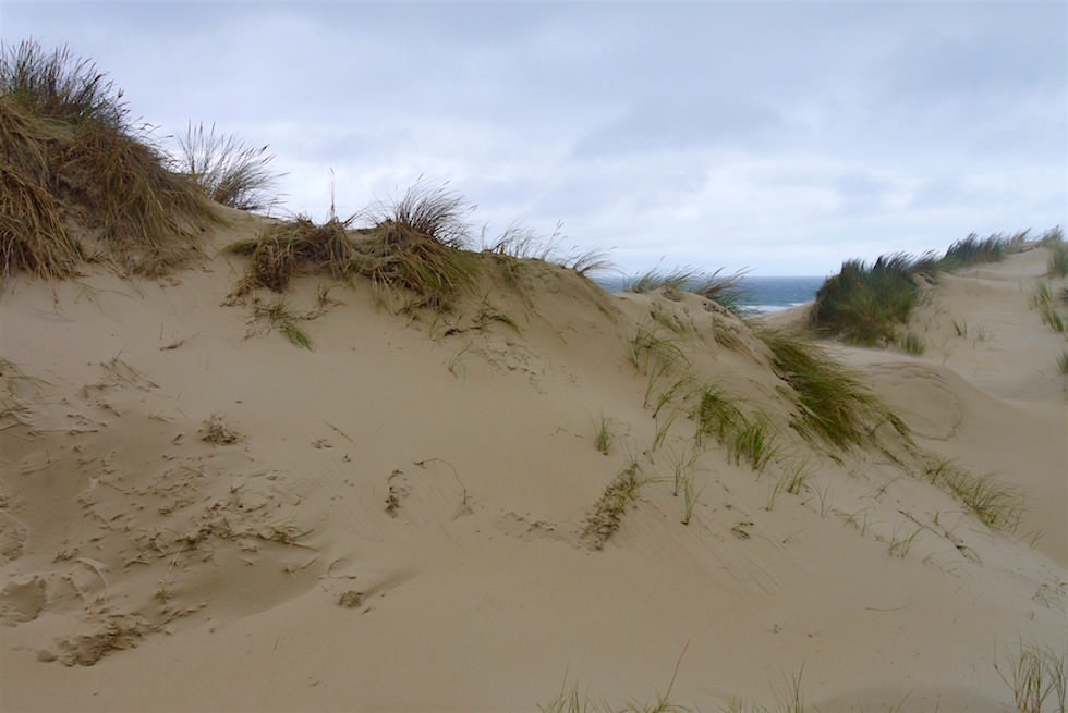 Peron Sand Dunes - St Helens - Bay of Fire - Tasmania