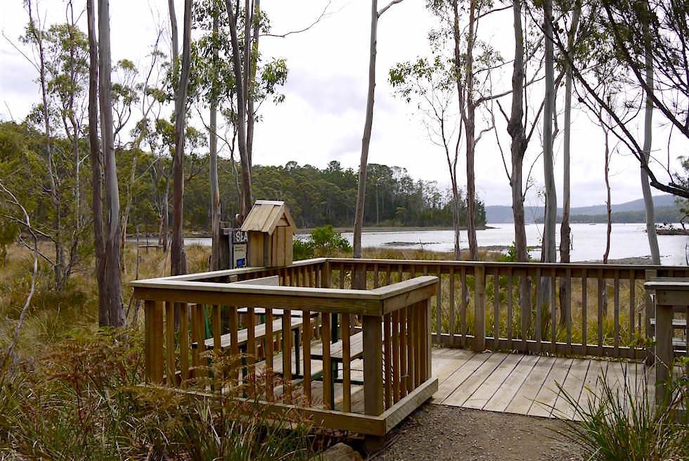 Vogelbeobachtung Unzoo - Tasmanien