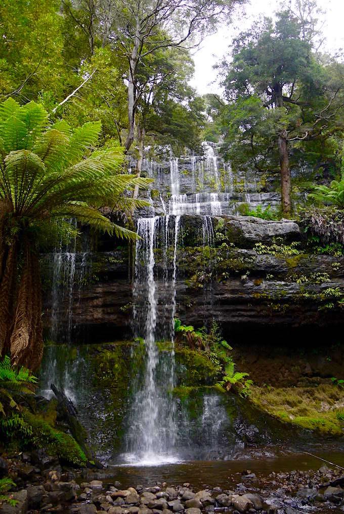 Blick auf Russell Falls - Mt Field Natioanal Park - Tasmania -Tasmanien