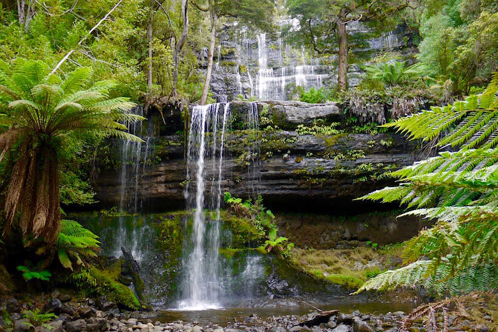 Russell Falls - Mt Field National Park - Tasmania - Tasmanien
