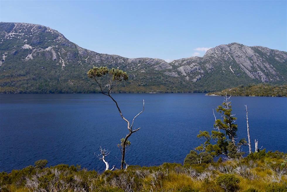 Dove Lake Wanderung: Blick auf den Dove Lake - Tasmanien