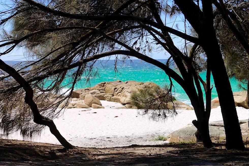 Blick aus Campervan - Bay of Fires - Tasmanien