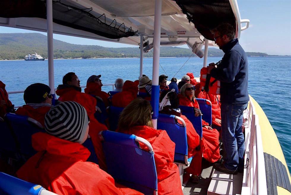 Bruny Island Cruise: die Speedboote - Tasmanien