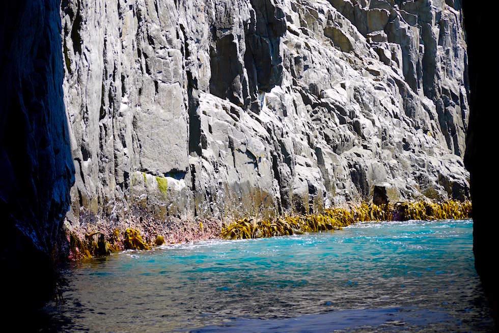 Felsdurchfahrt - Bruny Island Cruise - Tasmanien