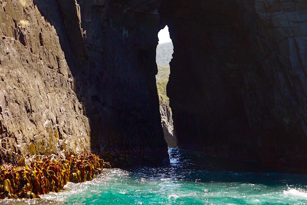 Keyhole Cave - Bruny Island Cruise - Tasmanien