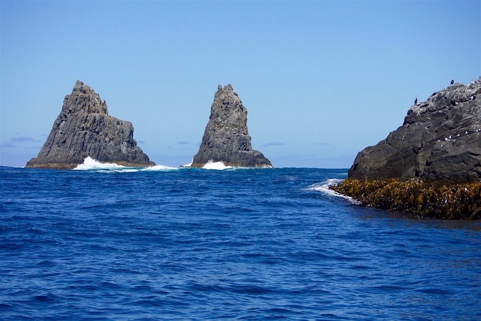 Felsformationen Southern Ocean - Tasmanien
