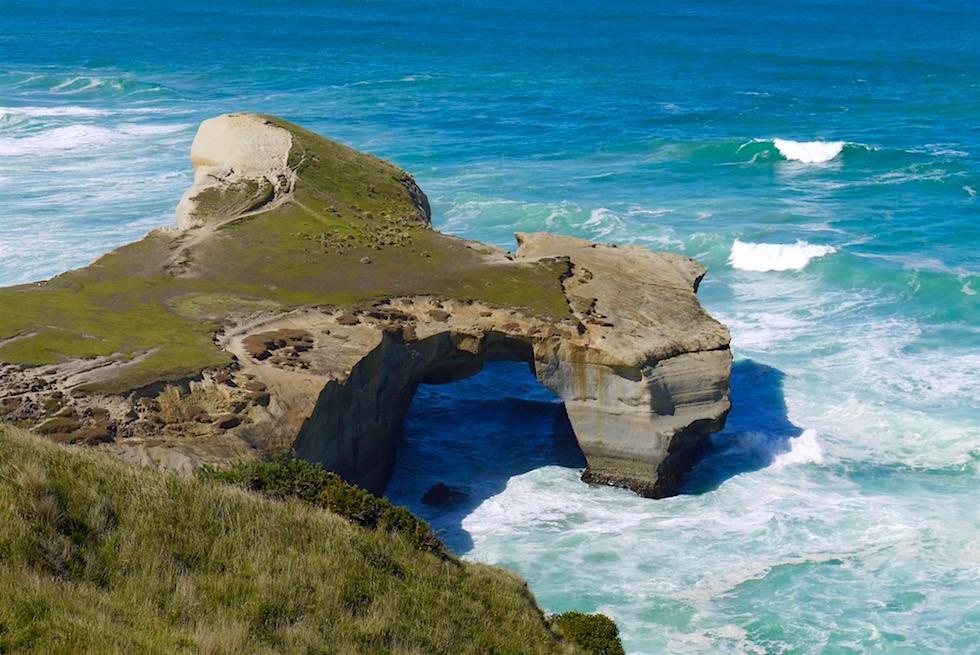 Blick auf Felsbogen am Tunnel Beach bei Dunedin - Neuseeland