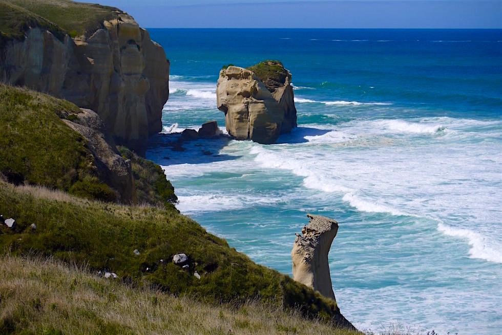 Küste beim Tunnel Beach bei Dunedin - Neuseeland Südinsel
