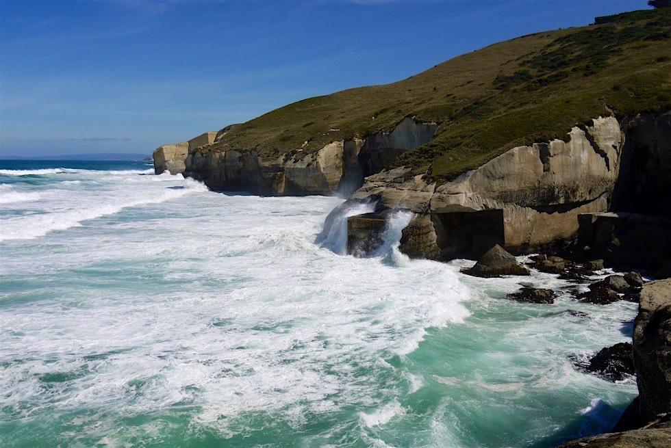 Küstenabschnitt Tunnel Beach - Dunedin - Neuseeland Südinsel
