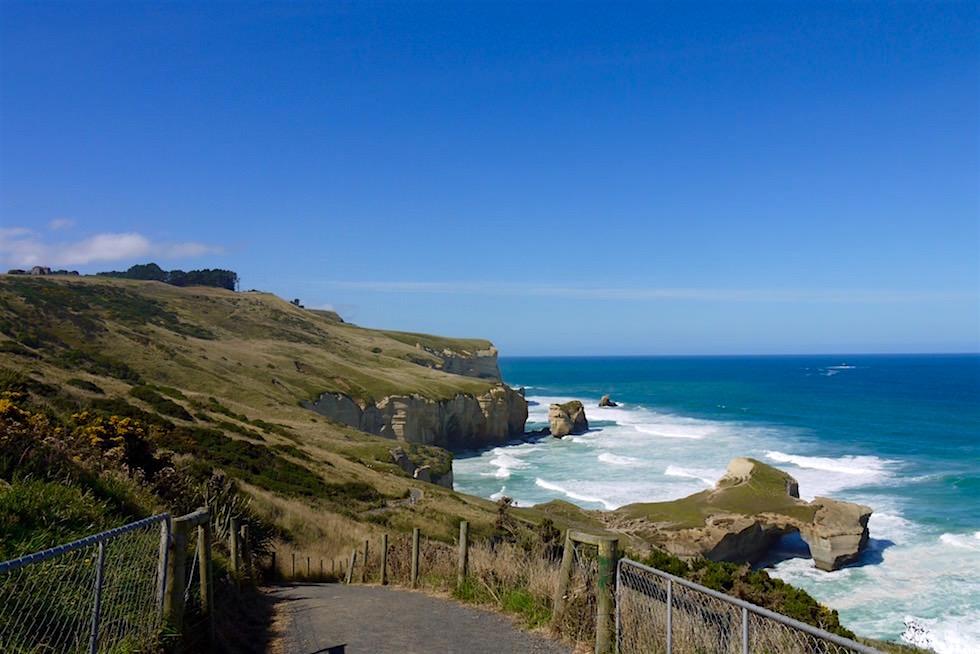 Blick hinunter auf den Tunnel Beach Track bei Dunedin - Neuseeland Südinsel