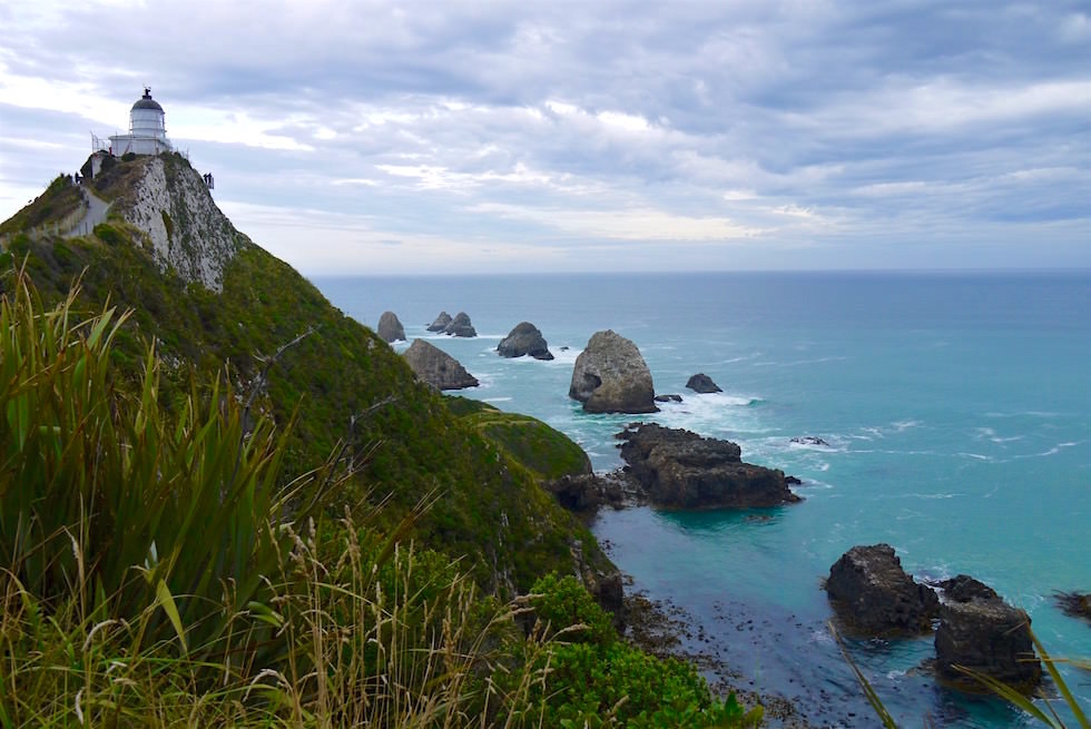 Ausblick Nugget Point Lighthouse - Catlins - Clutha - Neuseeland Südinsel