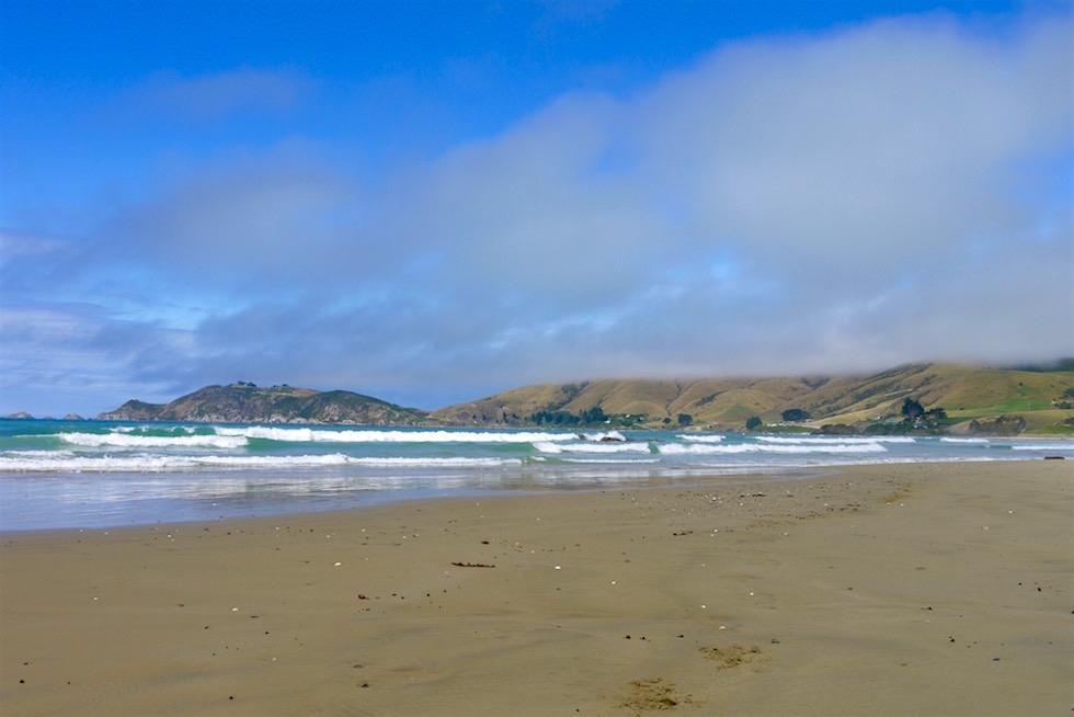 Blick auf Nugget Point Landzunge - Catlins - Neuseeland Südinsel