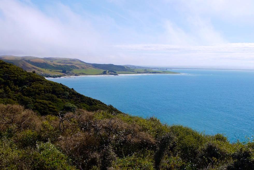 Blick Aussichtspunkt am Parkplatz - Nugget Point - Catlins - Neuseeland
