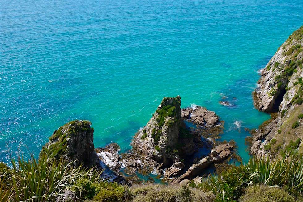 Tiefblicke vom Weg zum Nugget Point - Neuseeland - Southern Scenic Route