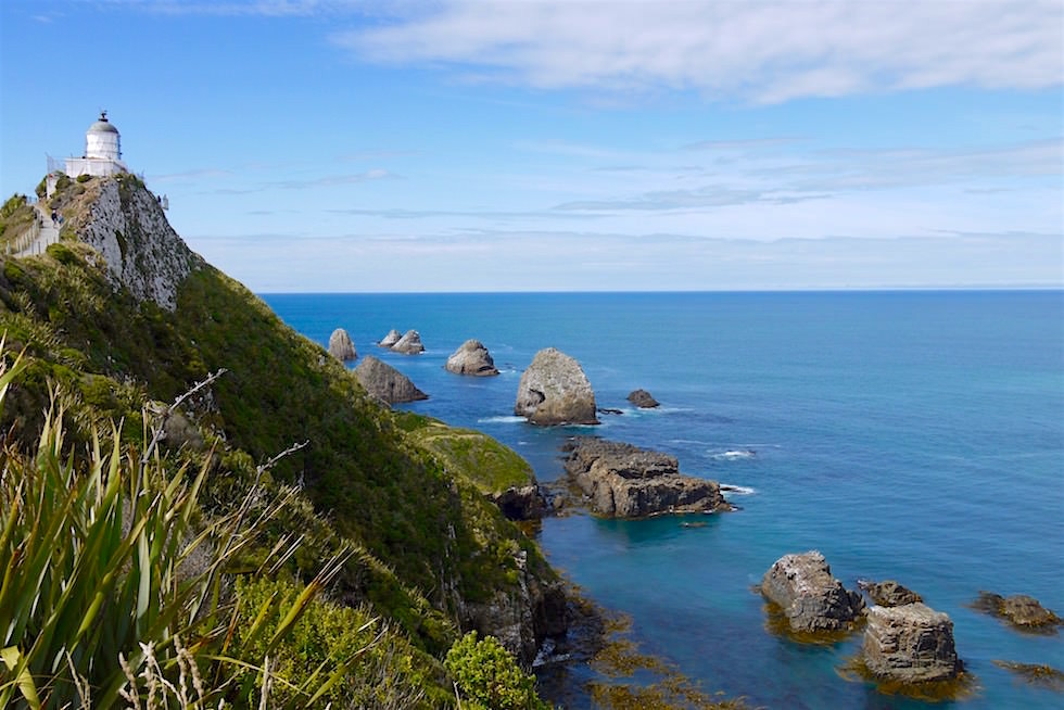Aussichtspunkt kurz vor dem Nugget Point Lighthouse - Neuseeland Südinsel - Southern Scenic Route