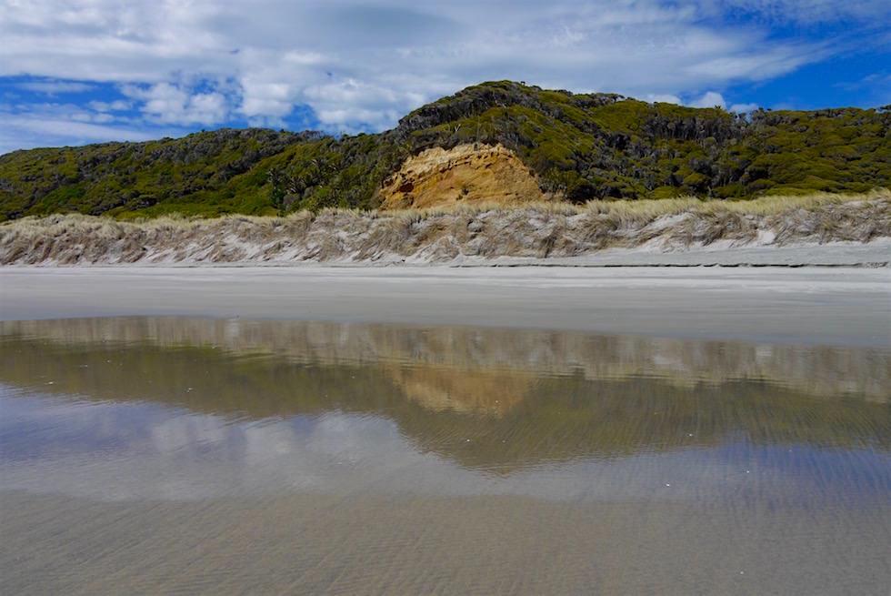 Wasserspiegelungen Dünenlandschaft - Wharariki Beach - Neuseeland
