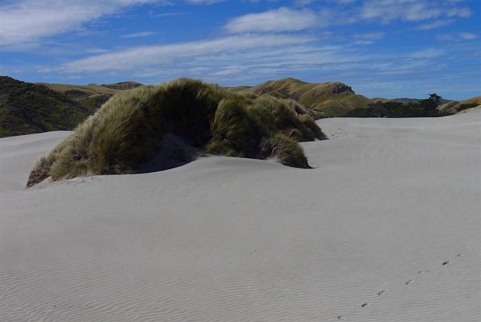 Sanddünen & Gras - Wharariki Beach - Neuseeland