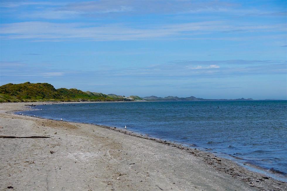 Strandwanderung Farewell Spit - Neuseeland