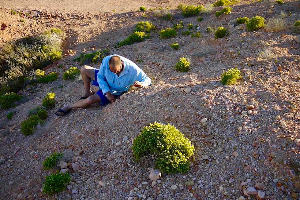 Coober Pedy - Noodling Opalsuche auf Schuttbergen - South Australia