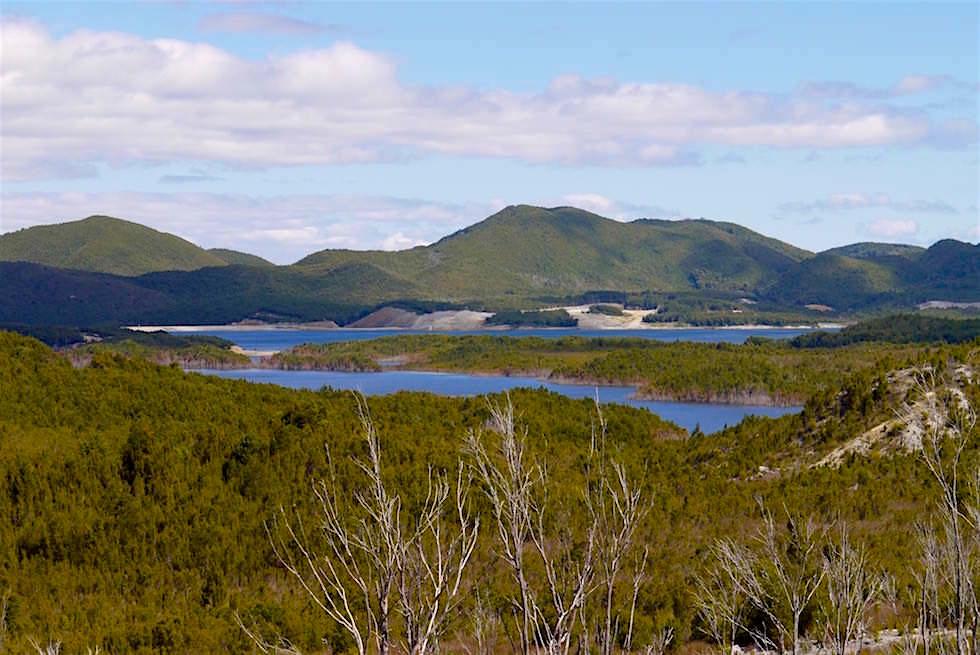 Seenlandschaft nahe Strahan - Tasmanien
