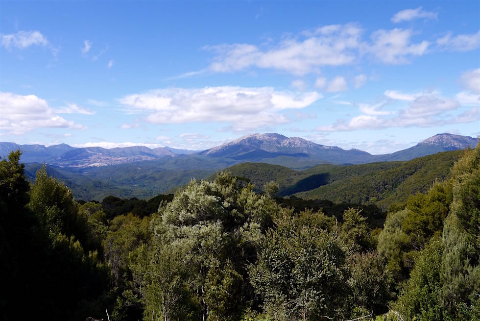 Bergpanorama auf dem Weg von Queenstown nach Strahan - Tasmania