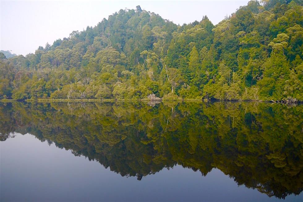 Gordon River - Franklin-Gordon Wild Rivers National Park - Tasmania